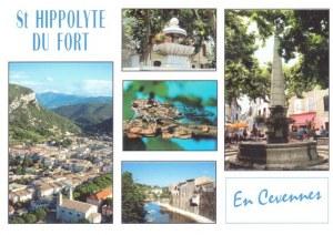A postcard from St Hippolyte Du Fort (Sylvie)