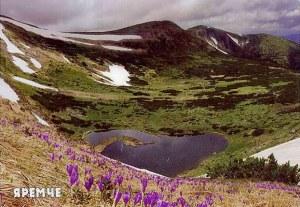 A postcard from Burshtyn (Mary)