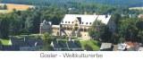 A postcard from Goslar (Julia)