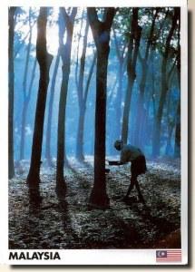 A postcard from Petaling Jaya, Selangor (Lay Hoon)