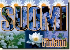 A postcard from Suomenniemi (Riita)