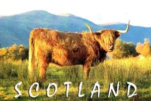 A postcard from Edinburgh (Georgina)