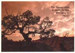 A postcard from South Dakota, SD (Parker)