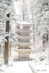 A postcard from Hokkaido