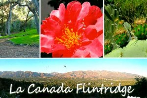 A postcard from La Canada (Carlyn)