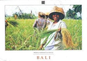 A postcard from Yogyakarta (Meilinda)
