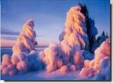 A postcard from Minnesota (Jennifer 'Khaki')